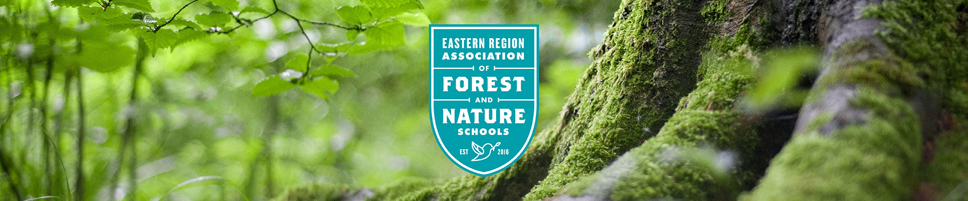 Eastern Region Association Of Forest And Nature Schools Teacher
